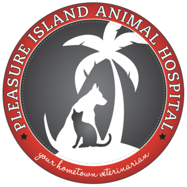 pleasure Island Animal Hospital Carolina Beach North Carolina